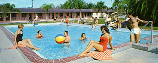 lewis_palm_park_motel_st_petersburg_FL